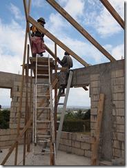 local scaffolding