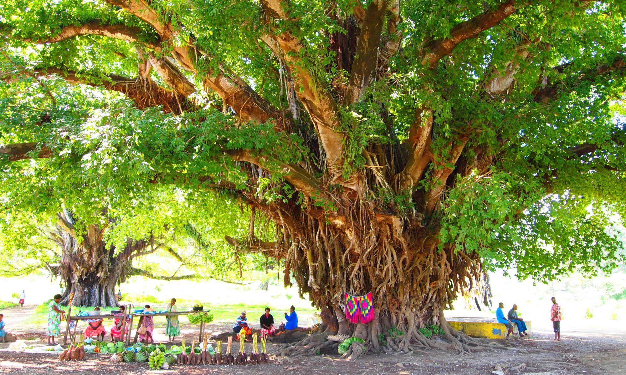 Vision for Vanuatu